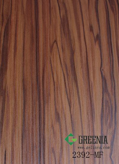 橄榄木2392-MF
