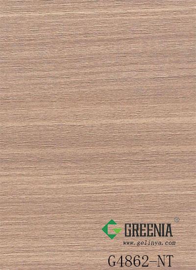大地红豆杉         G4862-NT
